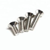 Stainless Steel Hexagon Socket Countersunk Head Screws